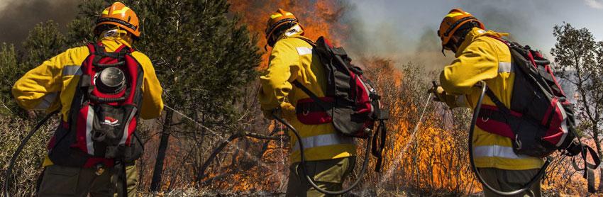 Ранцевый (лесной) огнетушитель: назначение, характеристики